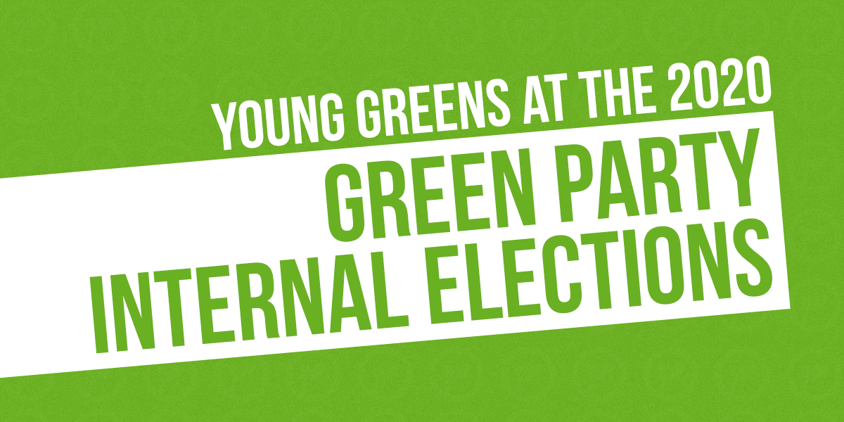 Graphic: Young Greens at the 2020 Green Party Internal Elections